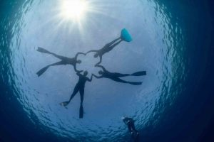 Afternoon freediving session